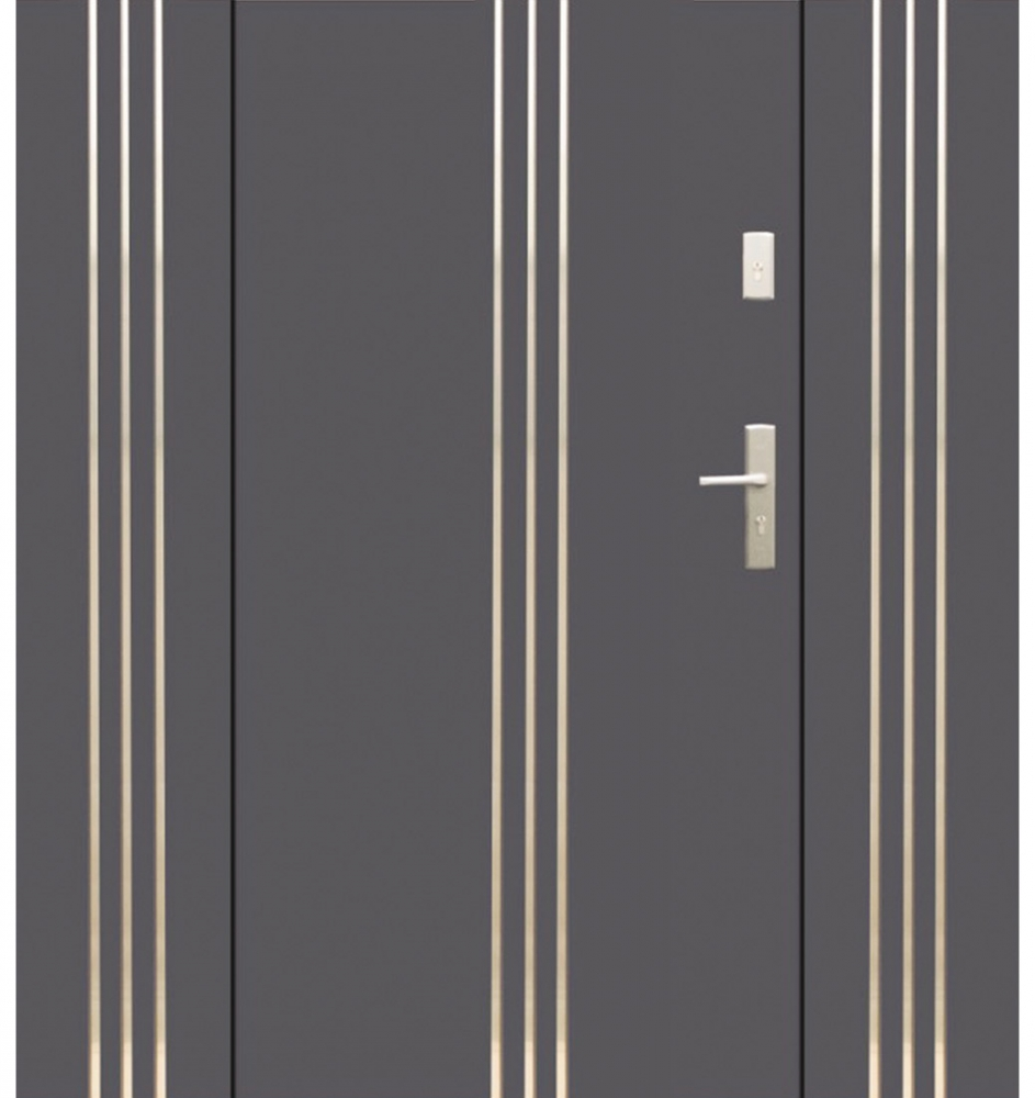 Fargo 32 T - entrance door with two side panels