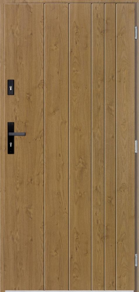 Gutenberg - contemporary front door